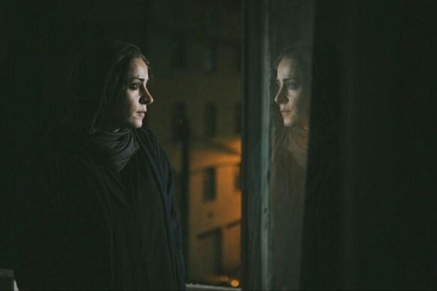 جایزه بهترین فیلم اتریشیها به «قصیده گاو سفید» رسید