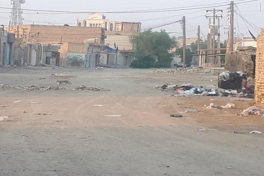 بهداشت نامناسب خیابان، شهروندان سوسنگرد را آزار میدهد + فیلم