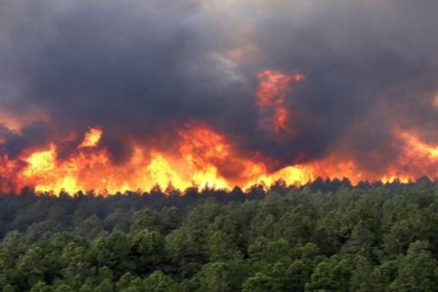 افزایش خطر آتشسوزی در عرصههای منابع طبیعی گلستان