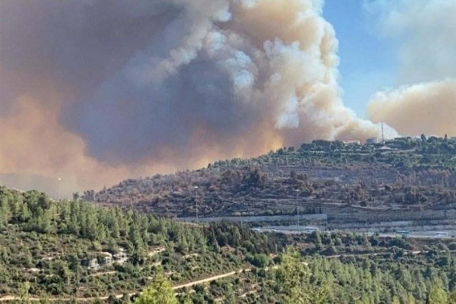 مهار آتشسوزی پارک جنگلی کرخه