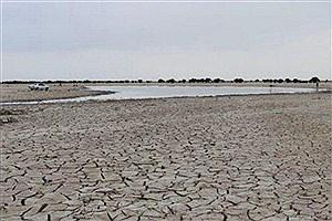 تصویر  ممنوعیت تخریب و برداشت از ذخیرهگاه زیست کره هامون