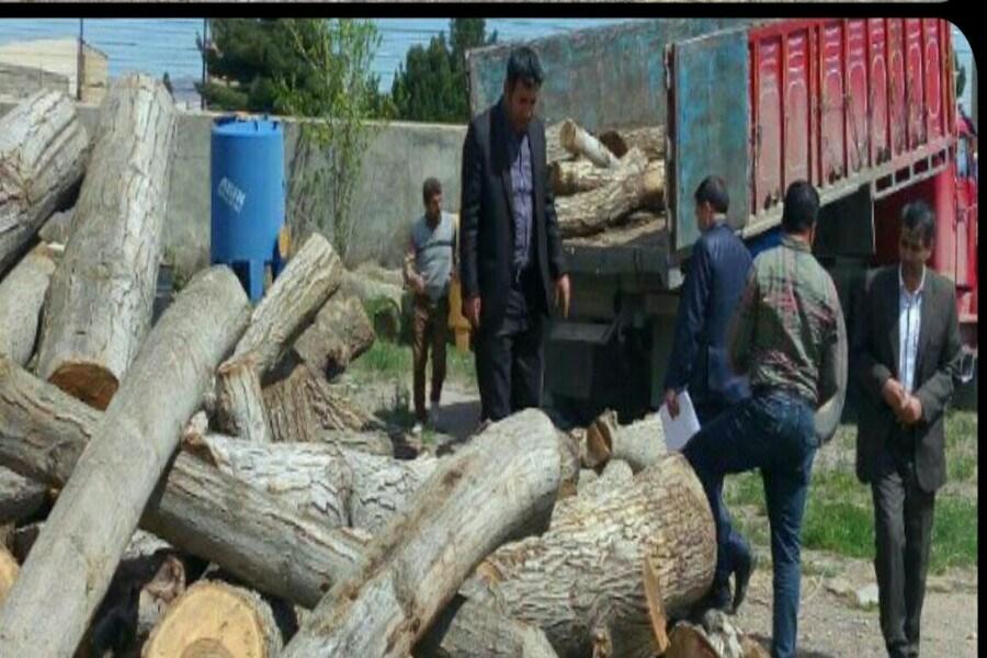 لزوم اخذ مجوزهای قانونی برای هرگونه حمل و نقل چوب