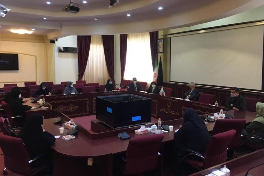 تصویر وزیر ورزش و جوانان با متخصصین ورزش بانوان دیدار کرد