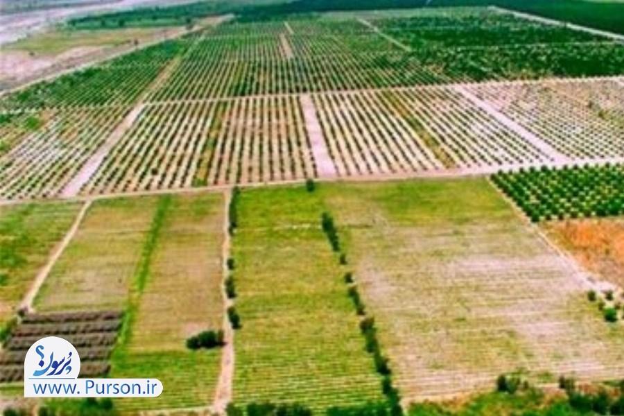 قانون احداث برای اتاقک و استخر در مزارع کشاورزی ابلاغ شد