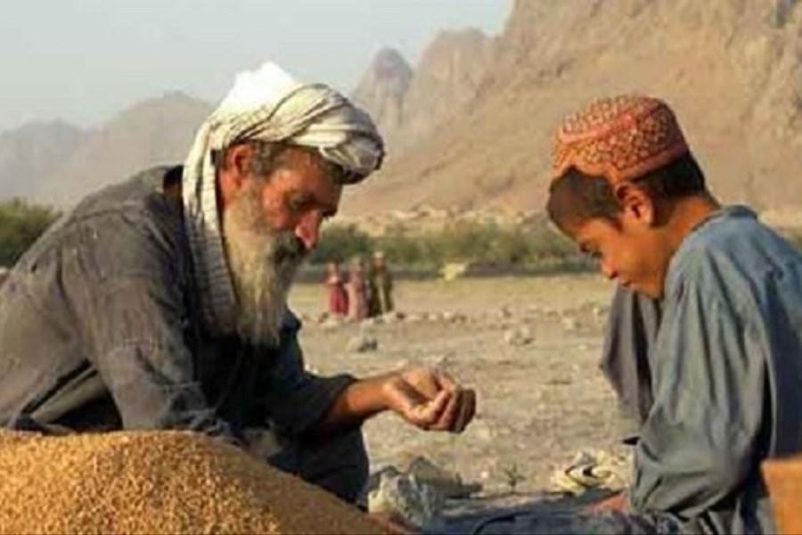 اقتصاد افغانستان در خطر سقوط