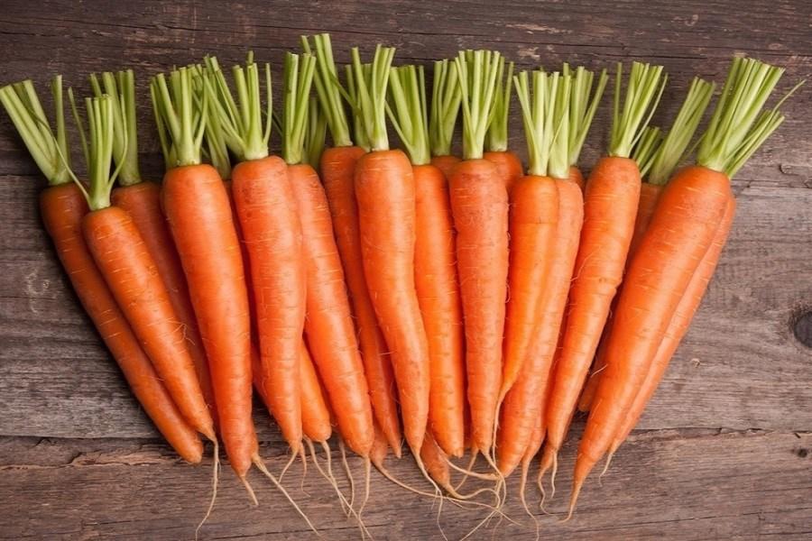 نرخ میوه نوسانی ندارد/ روند کاهشی قیمت هویج