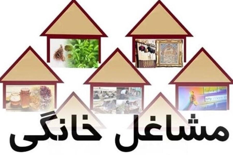 سهم استان اصفهان برای توسعه مشاغل خانگی 77 میلیارد تومان است