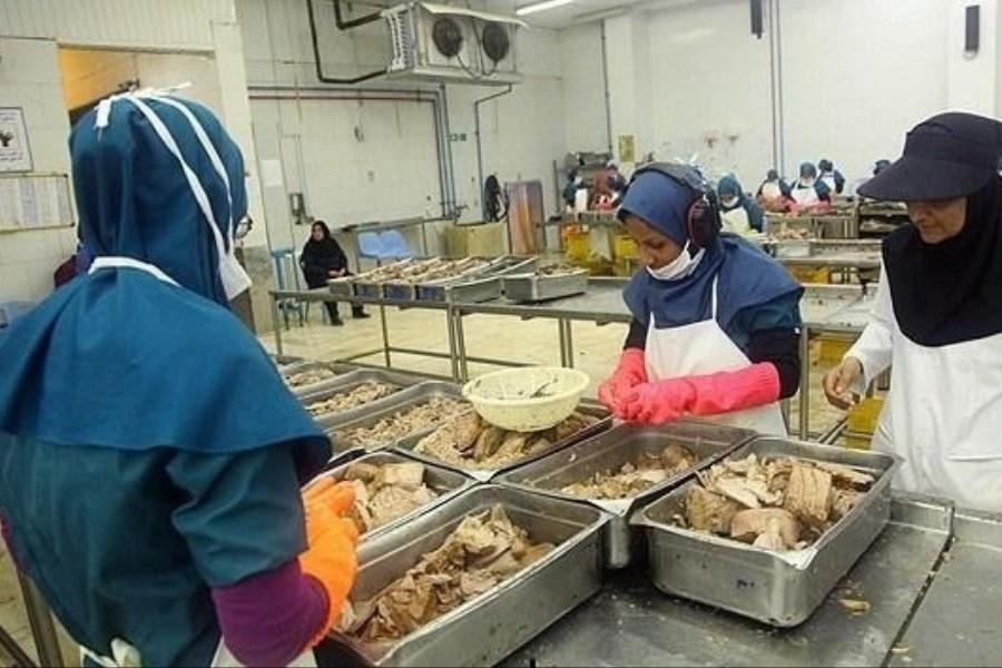 تصویر لاکچری شدن تن ماهی در پی افزایش قیمت / حذف کنسرو تن از سبد غذایی خانواده های کم درآمد