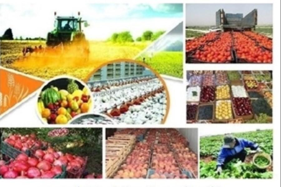 حضور مدیر عامل بانک کشاورزی در برنامه زنده تلویزیونی «نبض کشاورزی»