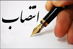 """تصویر  """"مجید منعمی""""  مشاور فرهنگی و رسانهای نهاد ریاستجمهوری شد"""