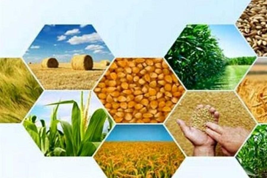 آغاز بیست و هشتمین نمایشگاه بینالمللی کشاورزی و مواد غذایی