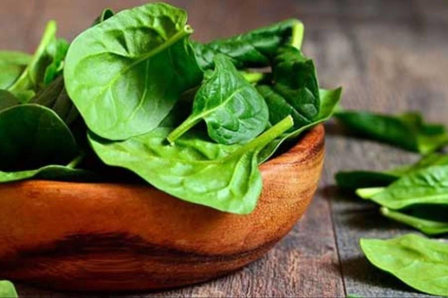 تصویر بهترین مواد غذایی برای تقویت سلامت کلیه