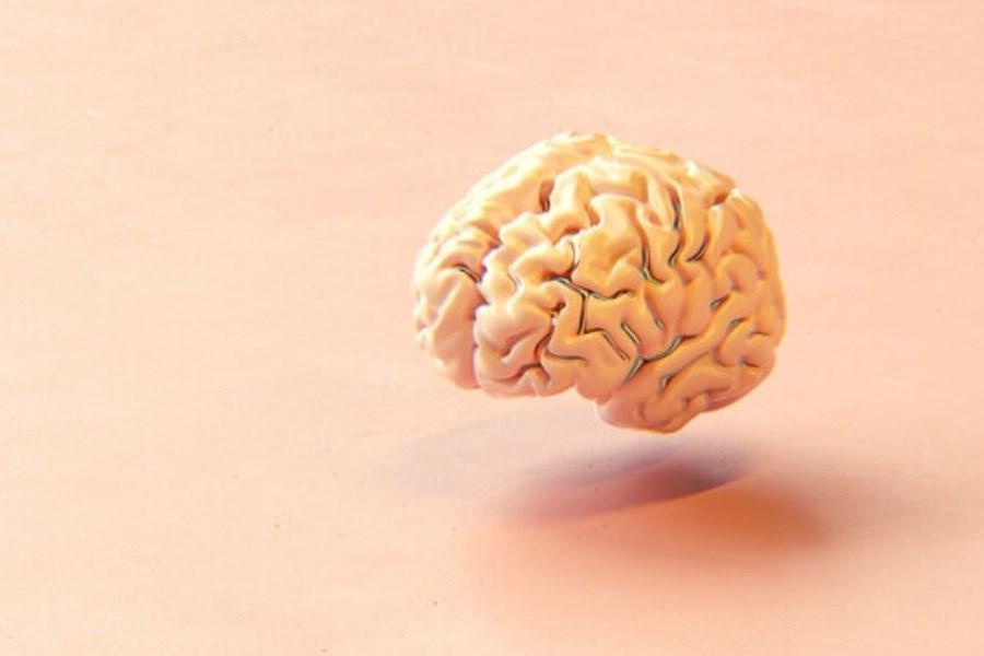 5 شیوه حفاظت از سلامت ذهن و پیشگیری از زوال زودهنگام مغز
