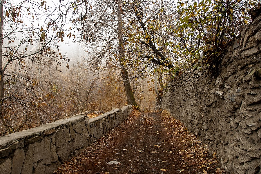 طبیعت زیبای پاییز در دولت آباد