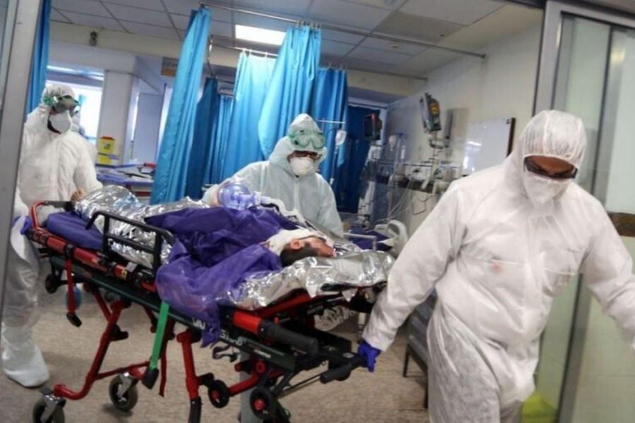 ۳ هموطن دیگر در مازندران قربانی کرونا شدند