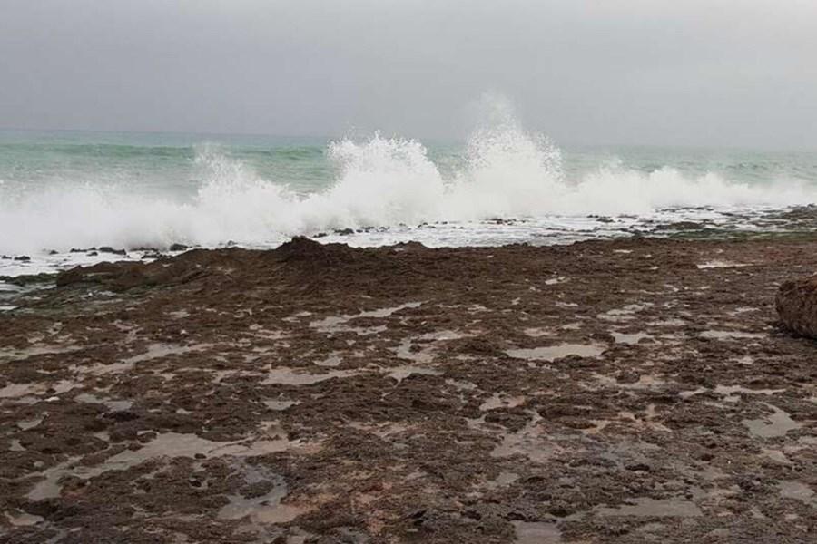 هشدار سطح قرمز دریایی برای جنوب کشور