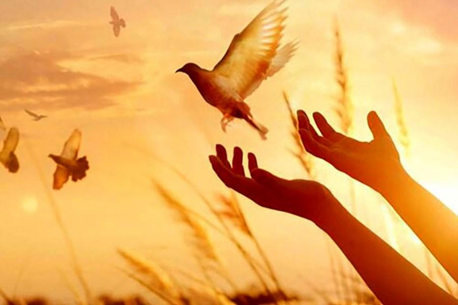 آزادی ۴ گروگان کهنوجی از بند ۲ گروه گروگانگیری