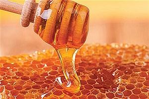 تصویر  رکورد آذربایجان غربی با تولید ۲۰هزارتن عسل در کشور