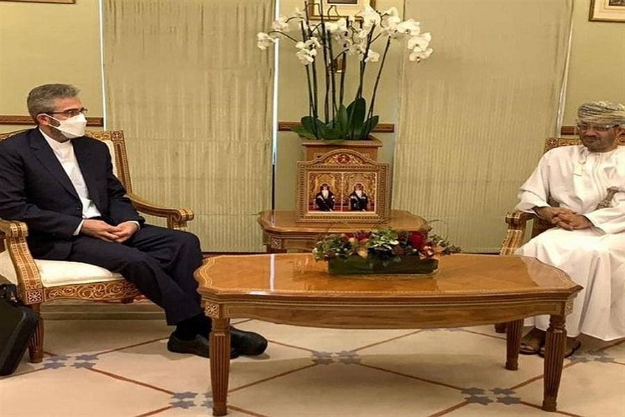تصویر دیدار معاون وزیر امور خارجه کشورمان با مقامات عمان