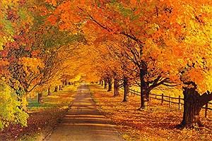 تصویر  پاییز امسال باران ندارد