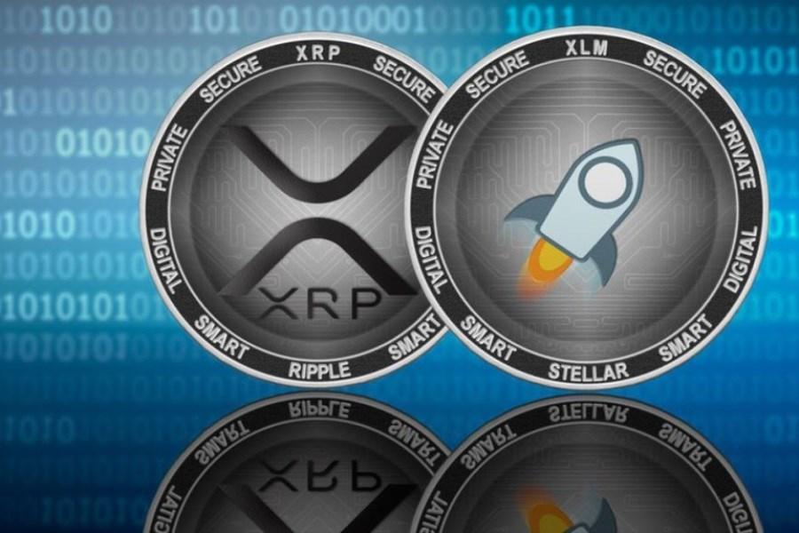تصویر مضطربترین سرمایهگذاران بازار ارز دیجیتال چه کسانی هستند؟