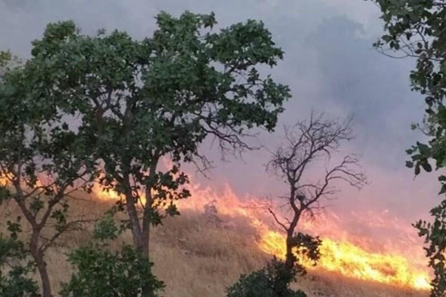 ادامه تلاشها برای مهار آتش سوزی در ارتفاعات کازرون