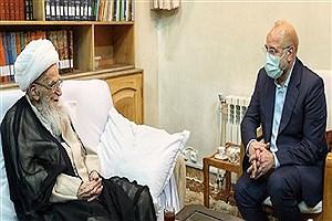 تصویر  دیدار رئیس مجلس با مراجع عظام صافی گلپایگانی و جوادی آملی