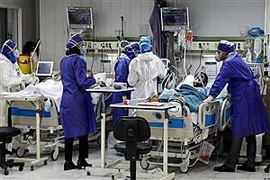 تصویر  افزایش 6 درصدی بستری بیماران کرونایی در خراسان جنوبی
