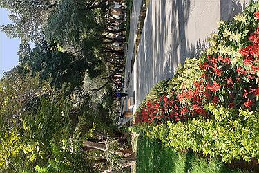 تصویر چهار باغ زیبا