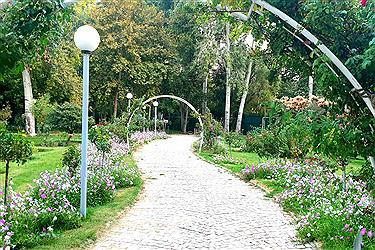 تصویر باغ گل ها قطعه کوچکی از بهشت در نصف جهان