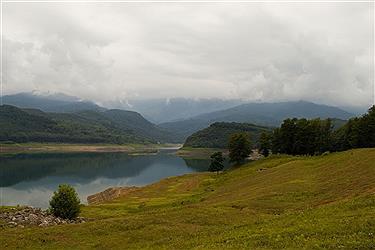 تصویر سد لفور دریاچه ای در آغوش جنگل